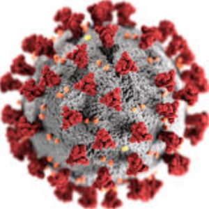 COVID 19 Virus and TIER 4 driving lessons